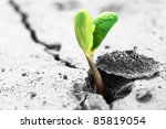 ecology concept. rising sprout... | Shutterstock . vector #85819054