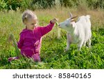 A Little Girl Feeding A Goat...