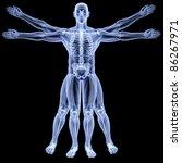 vitruvian man under x rays....   Shutterstock . vector #86267971