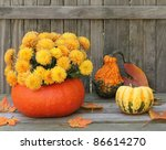 Autumn Mums In A Gourd On A...