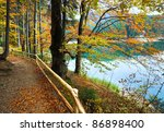 Mountain Synevir Lake View...