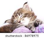 Stock photo kitten sleeping resting in a basket of balls of yarn 86978975