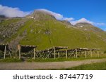 Drying of stock-fish for export on Lofoten Islands, Norway - stock photo