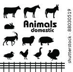 Vector Domestic Animals...