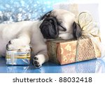 Stock photo sleeping puppy pug and gifts christmas 88032418