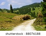 wood logs at edge of autumn... | Shutterstock . vector #88076188
