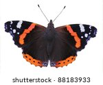 Isolated Red Admiral Butterfly  ...