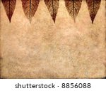 lovely brown background image... | Shutterstock . vector #8856088