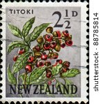 Small photo of NEW ZEALAND - CIRCA 1960: A stamp printed in New Zealand shows T?toki - Alectryon excelsus, series, circa 1960