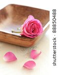rose in wooden bowl with petals - stock photo