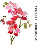 orchid flowers watercolor | Shutterstock . vector #88947661