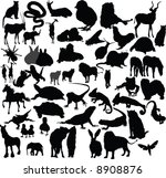 vector animals collection | Shutterstock .eps vector #8908876