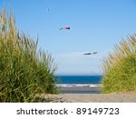 Green And Yellow Beach Grass O...