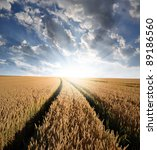 sunrise over fields | Shutterstock . vector #89186560