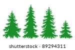 Silhouettes Of Fir Trees In...