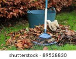 Gathering Autumn leaves - landscape - stock photo