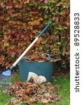 Gathering Autumn leaves with full trug and gloves - stock photo