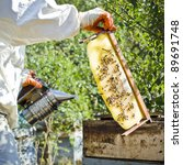 Beekeeper with honeycombs & smoker - stock photo