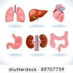 set of human anatomy parts ...   Shutterstock .eps vector #89707759