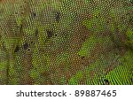 Green iguana skin available for background - stock photo