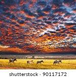 zebras at sunset | Shutterstock . vector #90117172