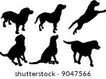 Stock photo illustration with dog silhouettes isolated on white background 9047566