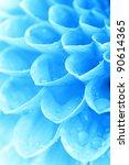 abstract petals | Shutterstock . vector #90614365