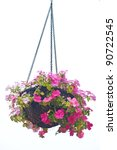 Hanging Basket Of Flowers...
