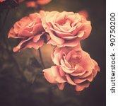 Stock photo vintage flowers 90750200