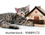 Kitten and model house - stock photo