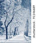 Beautiful Winter Landscape Wit...