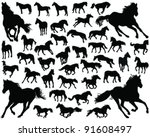 Horses Silhouette Vector