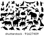 Contour Images Of Fauna On The...