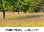 Cowpens National Battlefield Park, battlefield site
