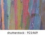 Photo Of Eucalyptus Bark T The...