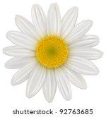 Daisy  Chamomile Flower...