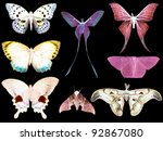 butterfly moth collection set isolated in black background for design - stock photo