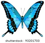 Beautiful Vector Isolated Blue...