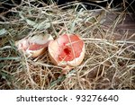 Two half egg shells left in a nest after chick hatching - stock photo