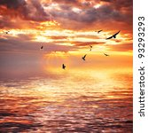 Cloudy Sea Sunset  With Seagulls