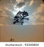 Tree Grows In Desert Scene