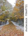 walking path in a park in early ... | Shutterstock . vector #93669721