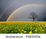 dandelion field and dead tree... | Shutterstock . vector #93854536