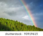 rainbow on wood. composition of ... | Shutterstock . vector #93919615