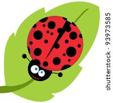 Cute Lady Bug On Leaf .vector...