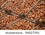 Tulip Bulbs On Market