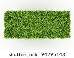 trimed shrub fence isolated on... | Shutterstock . vector #94295143