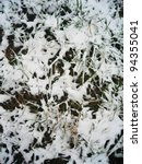 snowy plants in england.   Shutterstock . vector #94355041