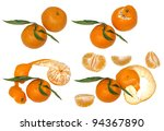 four stages of the existence of ... | Shutterstock . vector #94367890