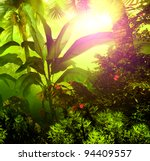 Morning fog in dense tropical rainforest - stock photo